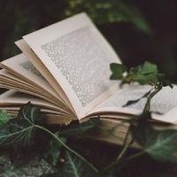 Најдобрите книги на сите времиња според 125 познати писатели!