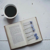 Кои се шесте доблести на читањето и како да го извлечете најдоброто од книгите?